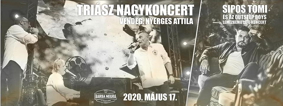 ELHALASZTVA - TRIÁSZ